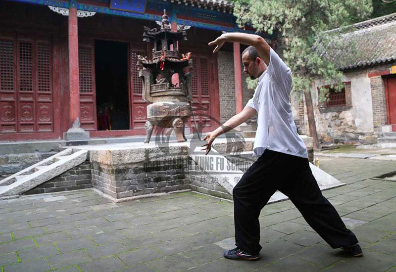 Bagua training chinese school