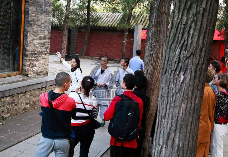 international students shaolin tour