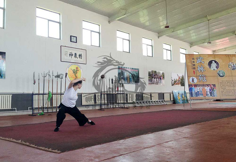 kung fu student performing