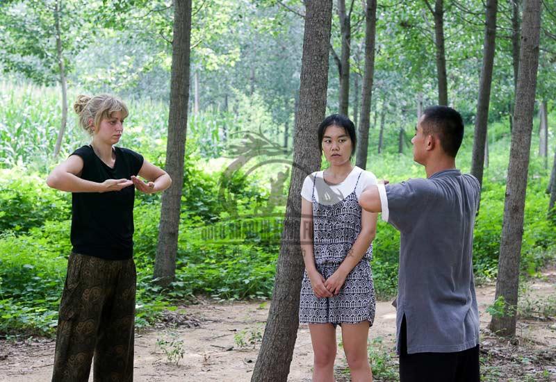 Chi Kung / Qi Gong-Qufu Shaolin Kung Fu School